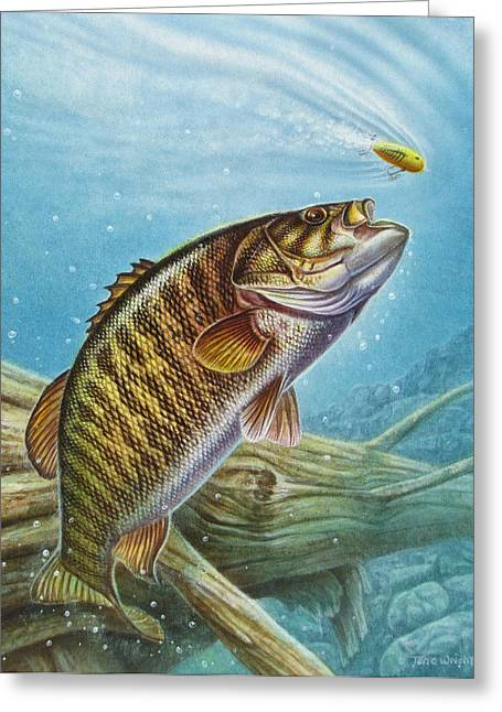 Jon Greeting Cards - Smallmouth Bass Greeting Card by JQ Licensing