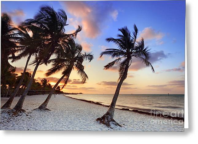 Smathers Beach 1 Greeting Card by Rod McLean