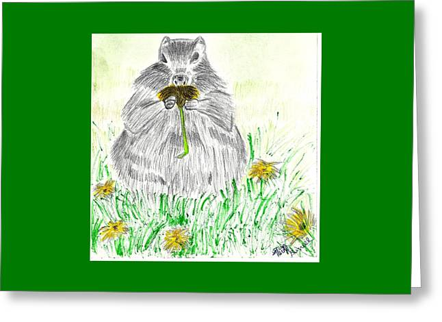 Beaver Drawings Greeting Cards - Smell My Daisy Greeting Card by Nicole Burrell