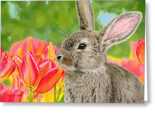 Drawing Color Pencils Drawings Greeting Cards - Smell The Flowers Greeting Card by Sarah Batalka
