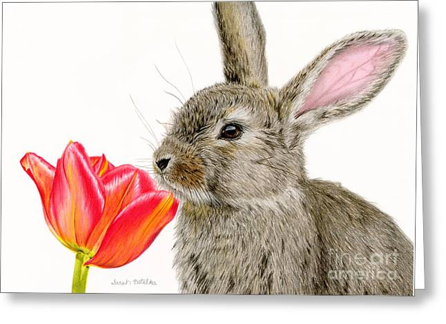 Hare Greeting Cards - Smells Like Spring Greeting Card by Sarah Batalka
