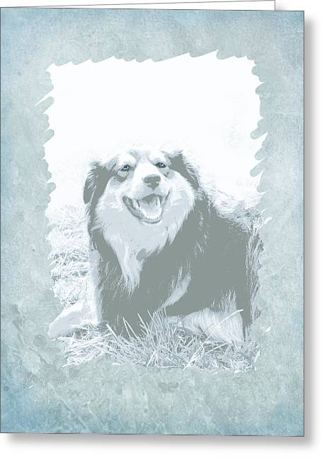 Dog Photo Greeting Cards - Smile Greeting Card by Ann Powell