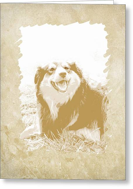 Dog Photo Greeting Cards - Smile II Greeting Card by Ann Powell