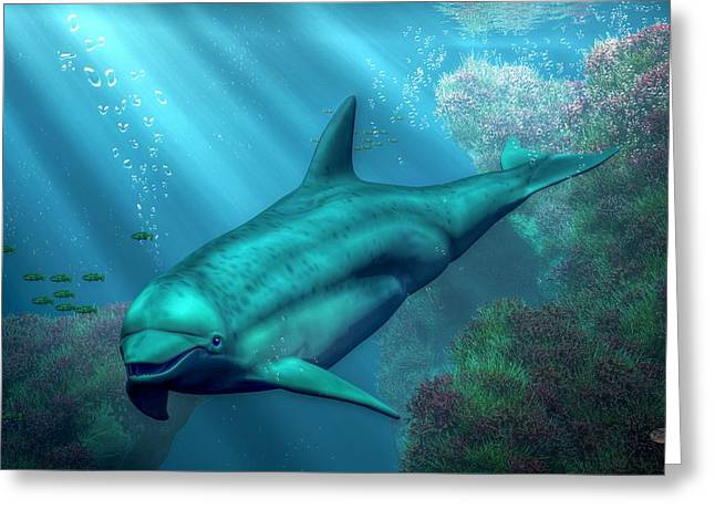 Marine Creatures Greeting Cards - Smiling Dolphin Greeting Card by Daniel Eskridge