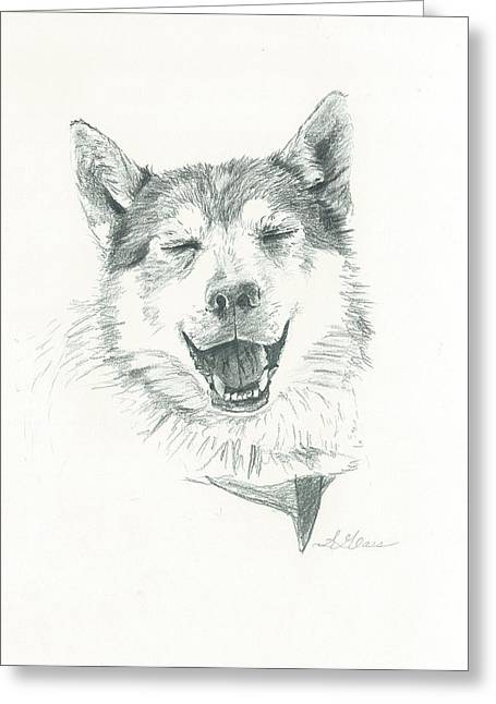 Husky Drawings Greeting Cards - Smiling Husky Greeting Card by Sarah Glass