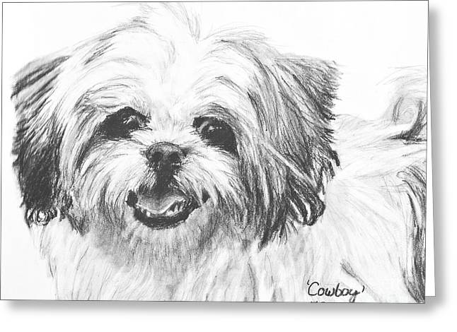 Charcoal Dog Drawing Drawings Greeting Cards - Smiling Shih Tzu Greeting Card by Kate Sumners