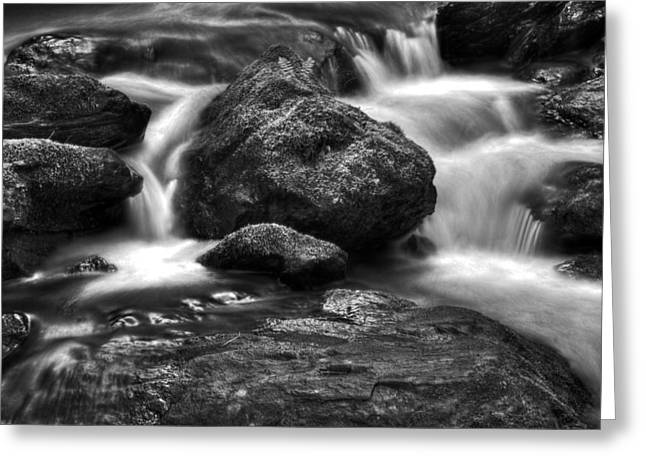 Fishing Creek Greeting Cards - Smith Creek in Black and White Greeting Card by Greg Mimbs