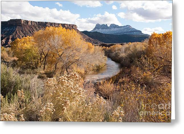 Geobob Greeting Cards - Smithsonian Butte and early snows along the Virgin River Utah Greeting Card by Robert Ford