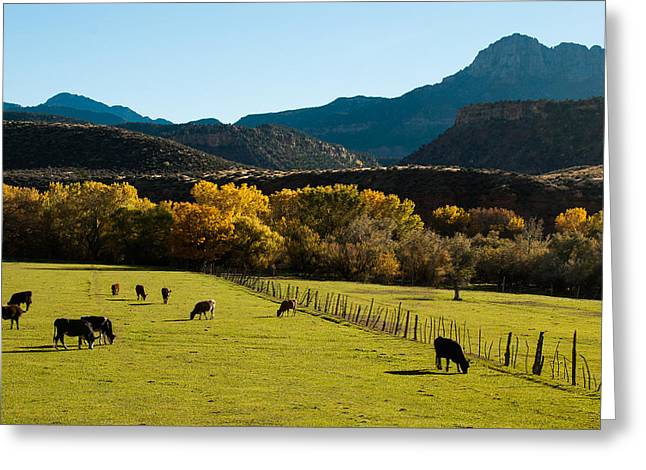 Smithsonian Butte And Two Feathers Ranch Early Fall On The Virgin River Rockville Utah Greeting Card by Robert Ford