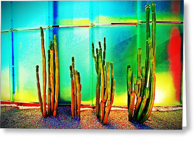 Scottsdale Artist Greeting Cards - SMoCA Cacti Greeting Card by Michelle Dallocchio