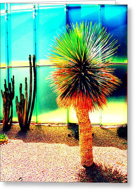 Scottsdale Artist Greeting Cards - SMoCA Flora Greeting Card by Michelle Dallocchio