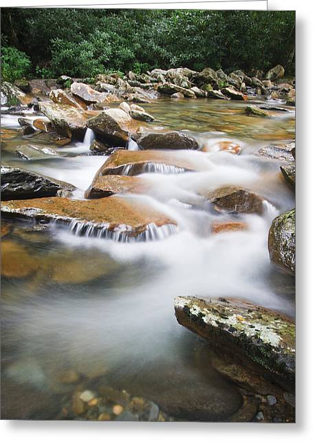 Rushing Water Greeting Cards - Smokey Mountain Creek Greeting Card by Adam Romanowicz