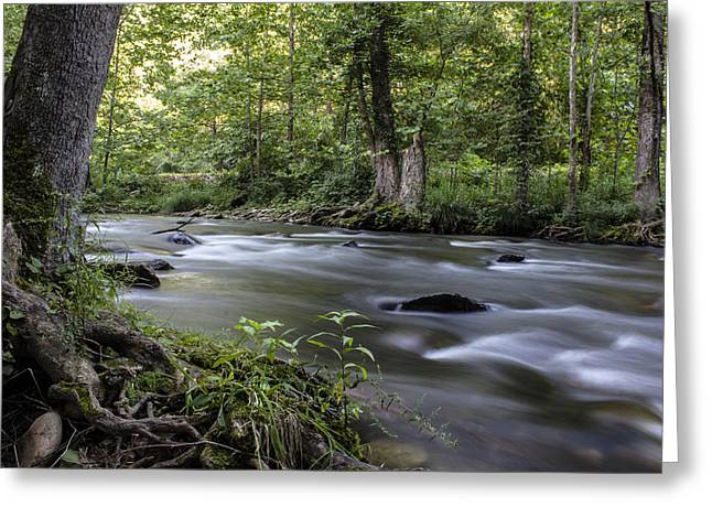 Tennessee River Greeting Cards - Smokey Mountain River  Greeting Card by John McGraw