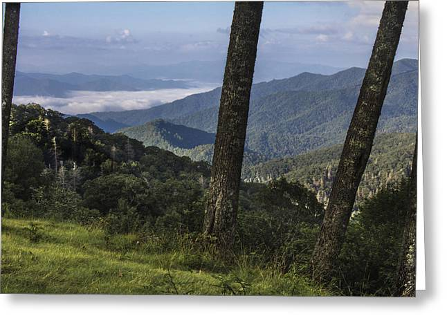 Smokey Mountain View Greeting Card by John McGraw