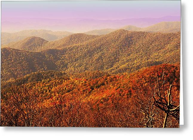 Smokey Mountain Drive Greeting Cards - Smokey Mountains Greeting Card by Will Burlingham