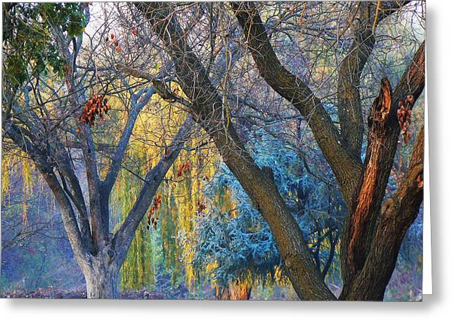 Smokey Sunset Trees Greeting Card by Pamela Patch