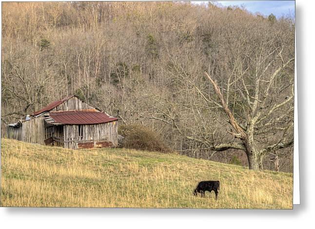 Tennessee Barn Greeting Cards - Smoky Mountain Barn 10 Greeting Card by Douglas Barnett
