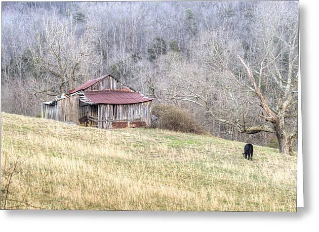 Tennessee Hay Bales Greeting Cards - Smoky Mountain Barn 2 Greeting Card by Douglas Barnett