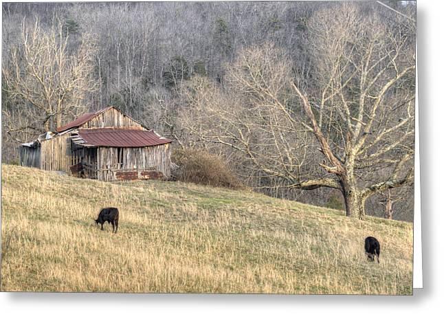 Tennessee Hay Bales Greeting Cards - Smoky Mountain Barn 3 Greeting Card by Douglas Barnett