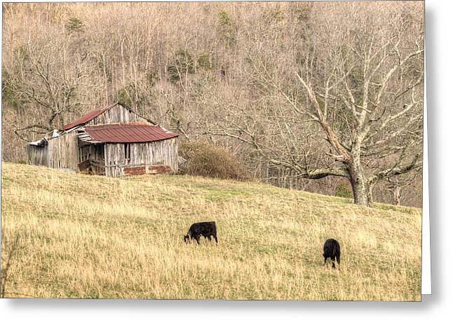 Tennessee Barn Greeting Cards - Smoky Mountain Barn 6 Greeting Card by Douglas Barnett