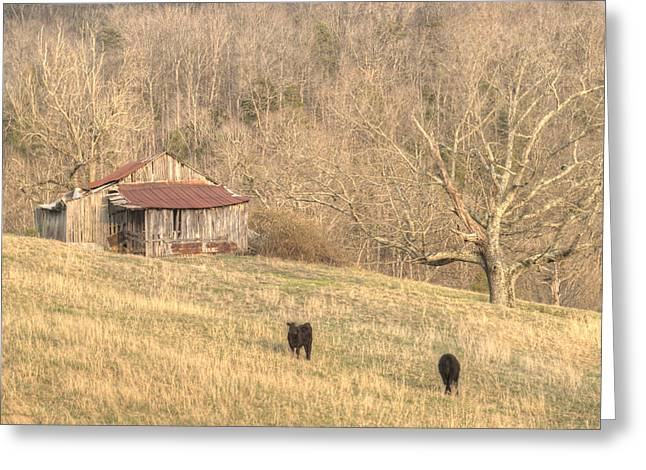 Tennessee Hay Bales Greeting Cards - Smoky Mountain Barn 8 Greeting Card by Douglas Barnett