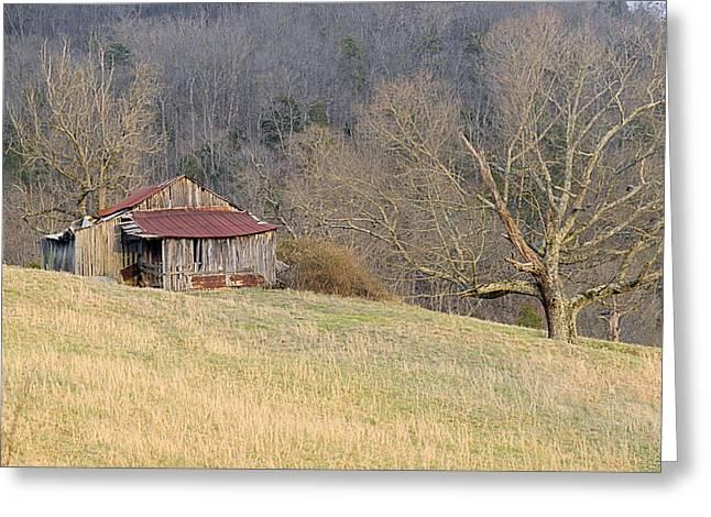 Tin Roof Greeting Cards - Smoky Mountain Barn 9 Greeting Card by Douglas Barnett