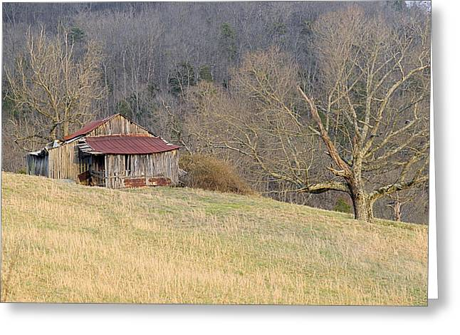 Smoky Mountain Barn 9 Greeting Card by Douglas Barnett