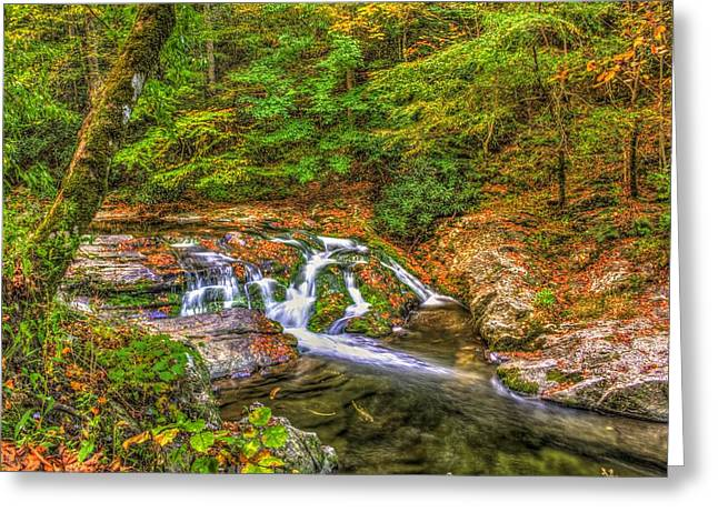 Gatlinburg Tennessee Greeting Cards - Smoky Mountain Creek in Fall Greeting Card by Zane Kuhle