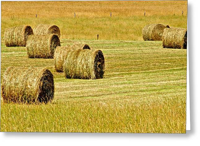 Tennessee Hay Bales Greeting Cards - Smoky Mountain Hay Greeting Card by Frozen in Time Fine Art Photography