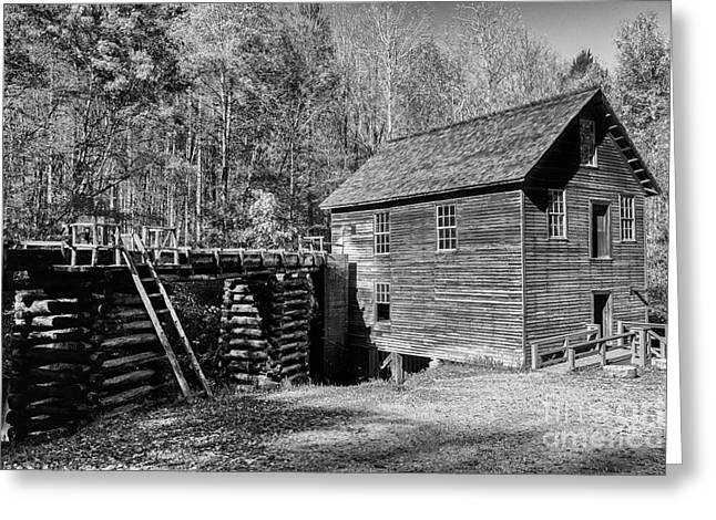 Mill In Woods Photographs Greeting Cards - Smoky Mountain Mill Greeting Card by Terri Morris
