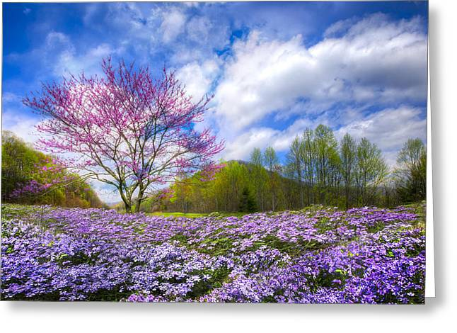 Tn Greeting Cards - Smoky Mountain Spring Greeting Card by Debra and Dave Vanderlaan