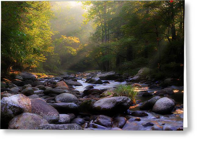 Smoky Greeting Cards - Smoky Mountain Stream Greeting Card by Michael Eingle