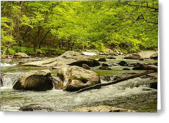 Stream Greeting Cards - Smoky Mountain Stream Greeting Card by Robert Hebert