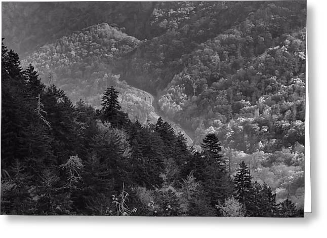 Gatlinburg Tennessee Greeting Cards - Smoky Mountain View Black And White Greeting Card by Dan Sproul