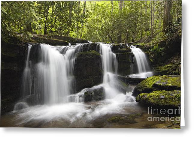 Eastern United States Greeting Cards - Smoky Mountain Waterfall - D008427 Greeting Card by Daniel Dempster