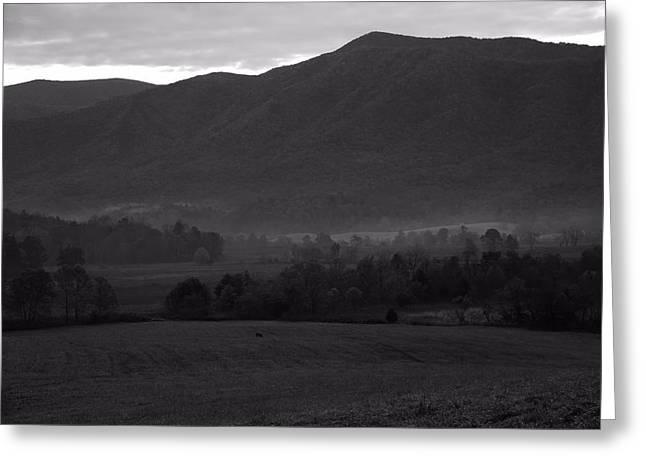 Smoky Greeting Cards - Smoky Mountains Black And White Greeting Card by Dan Sproul