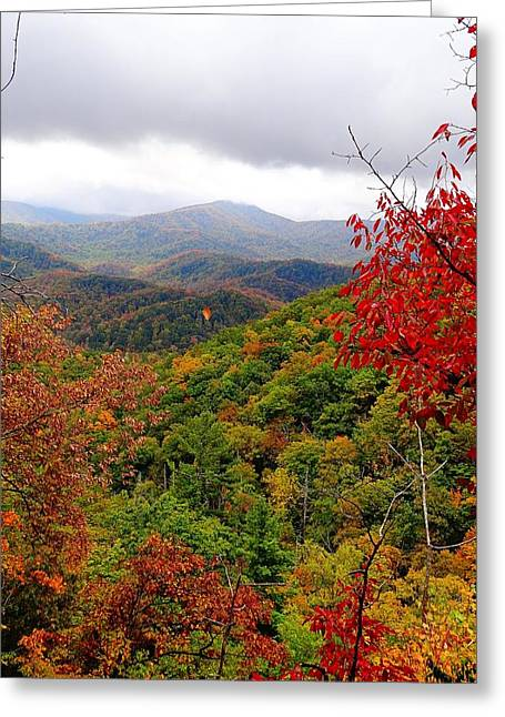 Smoky Greeting Cards - Smoky Mountains In The Fall Greeting Card by Dan Sproul
