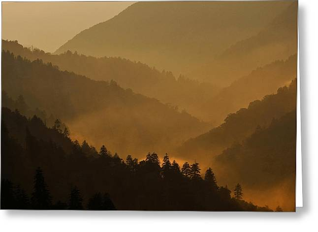 Smoky Greeting Cards - Smoky Mountains Greeting Card by Ron Sloan