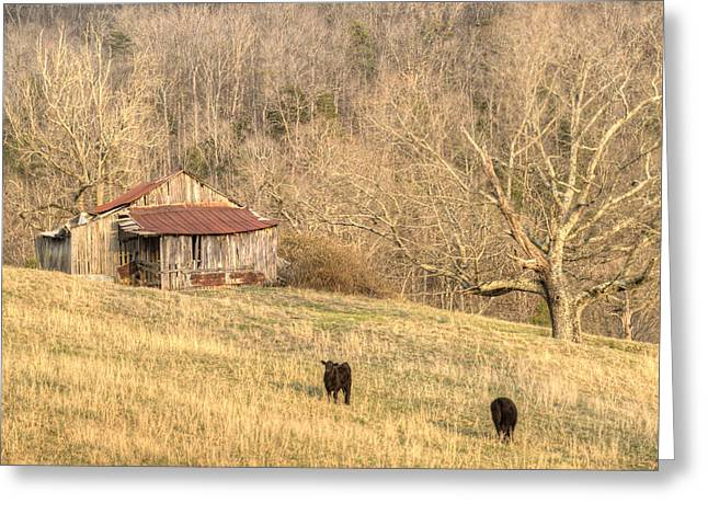 Tennessee Barn Greeting Cards - Smoky Mountian Barn 7 Greeting Card by Douglas Barnett