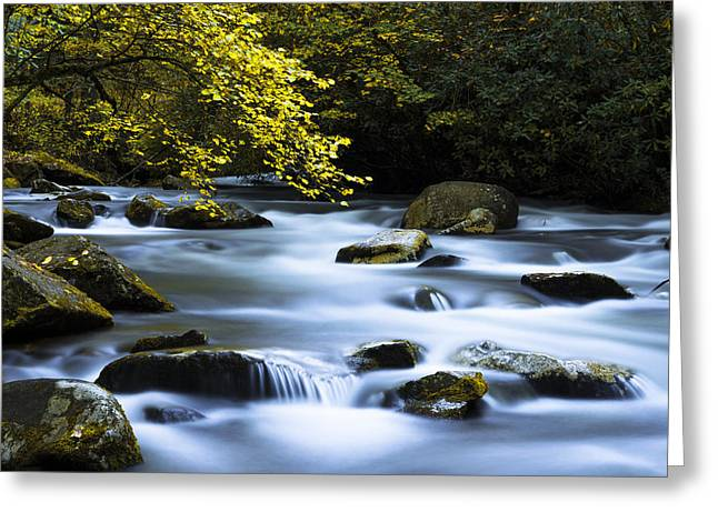 Great Falls Greeting Cards - Smoky Stream Greeting Card by Chad Dutson
