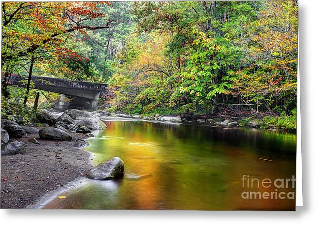 Fall River Scenes Greeting Cards - Smooth Flow Through October Greeting Card by Michael Eingle