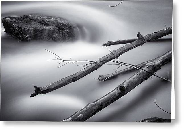 Floods Greeting Cards - Smooth Water and Branches Greeting Card by Geoffrey Baker