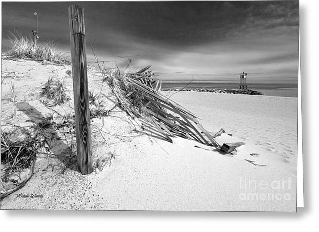 Sand Fences Greeting Cards - Smugglers Beach Greeting Card by Michelle Wiarda