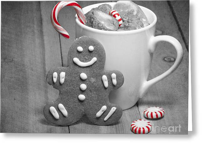 Snack For Santa Greeting Card by Juli Scalzi