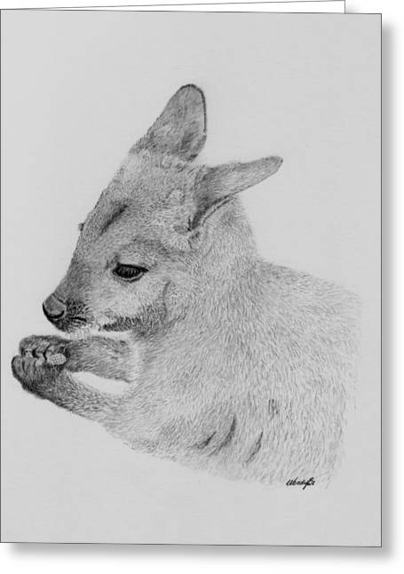 Kangaroo Drawings Greeting Cards - Snackin Wallaby Greeting Card by Wendy Brunell