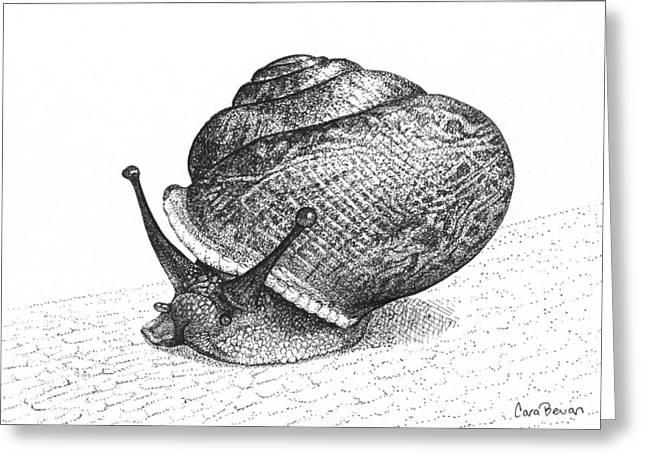 Pointillism Drawings Greeting Cards - Snail Poe Greeting Card by Cara Bevan