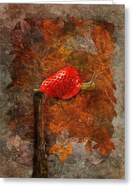 Leaves Digital Art Greeting Cards - Snail Sory - s19b Greeting Card by Variance Collections
