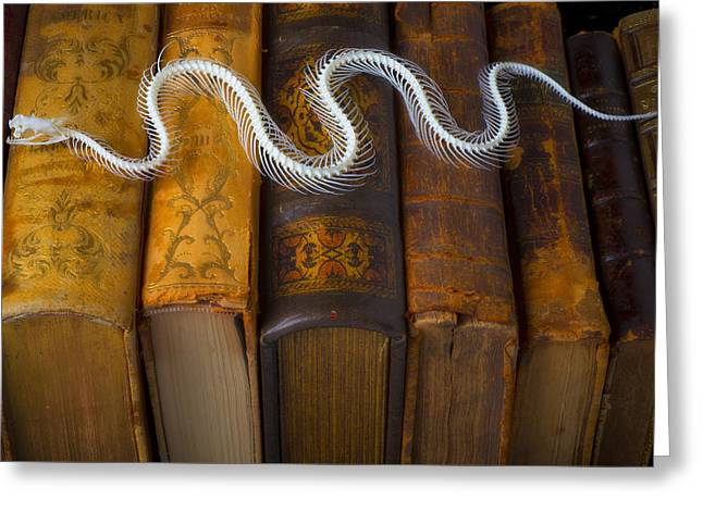 Library Greeting Cards - Snake and antique books Greeting Card by Garry Gay