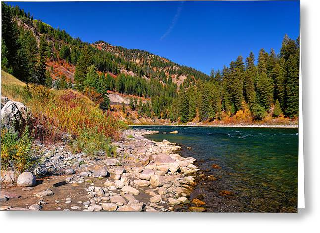 Tetons Greeting Cards - Snake River Canyon Autumn Greeting Card by Greg Norrell