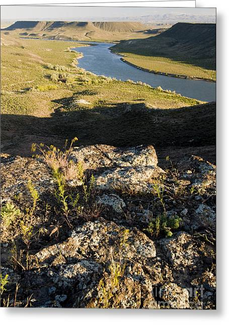 Morley Greeting Cards - Snake River Canyon Greeting Card by William H. Mullins